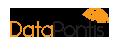 DataPontis Logo